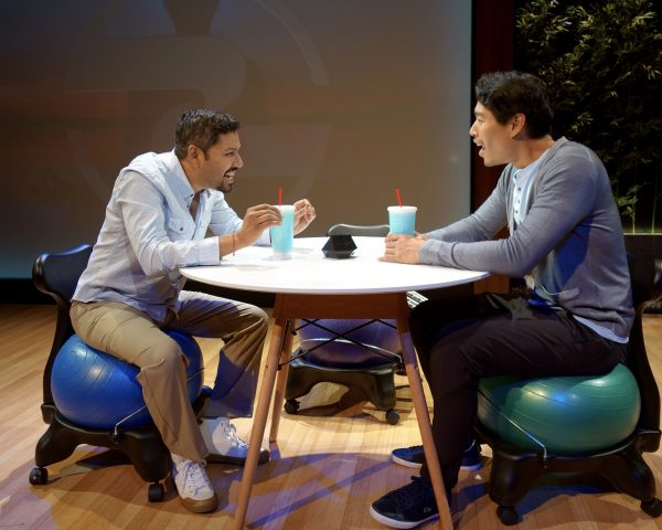 Dileep Rao and Tim Chiou in South Coast Repertory's 2017 world premiere production of Yoga Play by Dipika Guha. Photo by Tania Thompson/SCR.